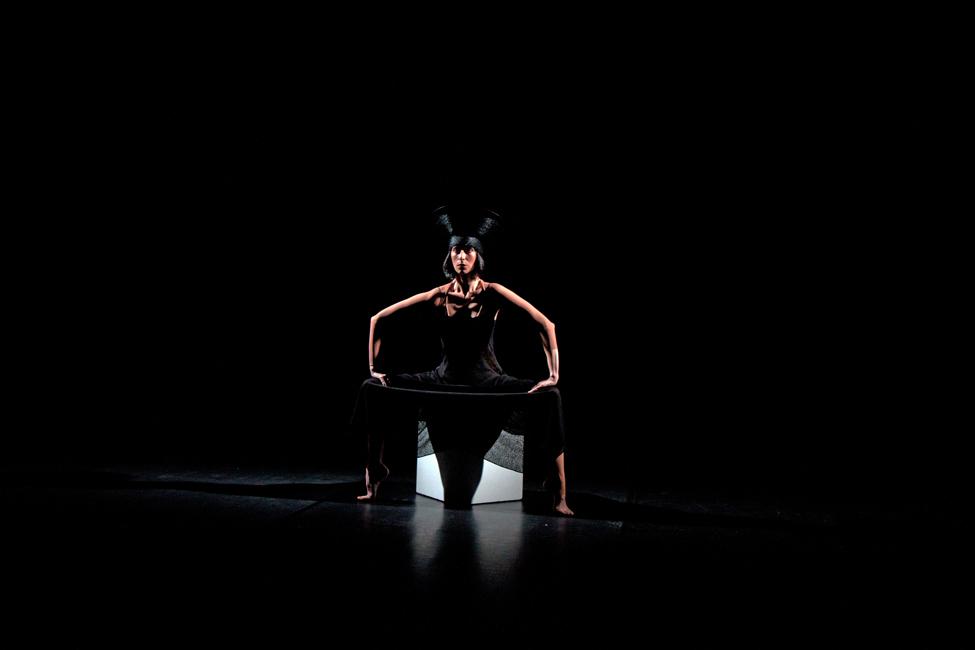 Les Bois de l'ombre © Marly Frijns