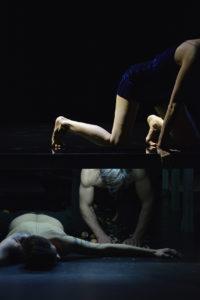 CURIOSITIES © Delphine Micheli